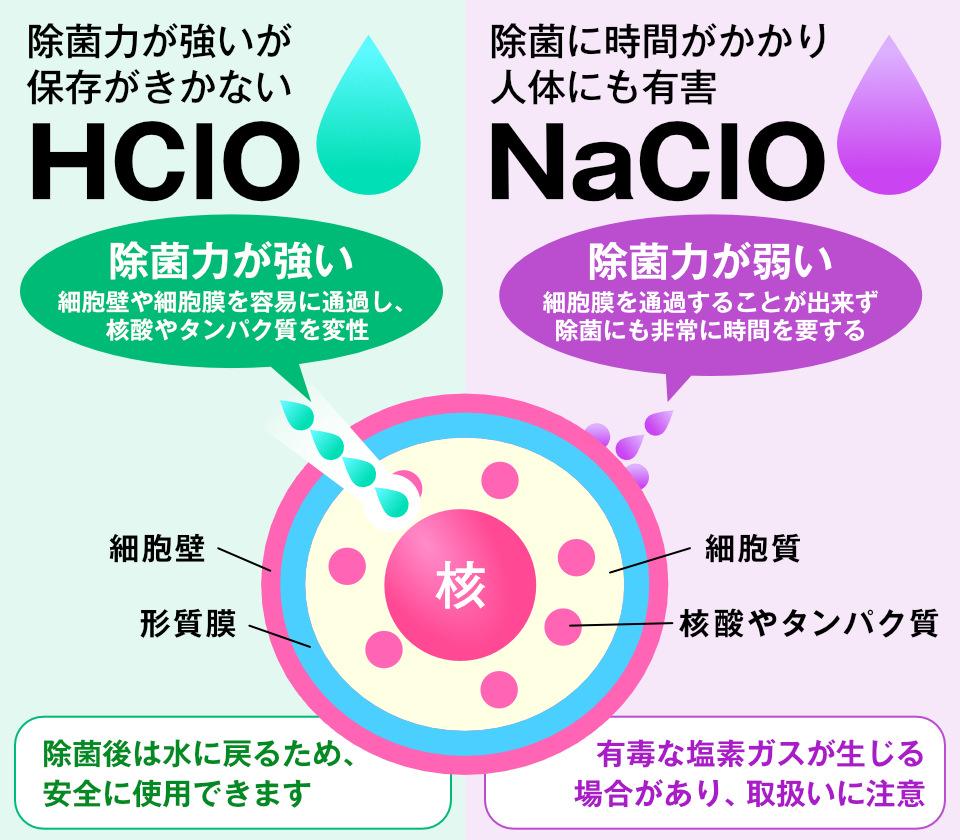 除菌力が強くても保存がきかないHCLO(次亜塩素酸水)と除菌に時間がかかり人体にも有害なNaClOとの比較。HClOの除菌力が強い理由は、細胞壁や細胞膜を容易に通過し、核酸やタンパク質を変性するその性質です。除菌後は水に戻るため、安全に使用できます。反面、NaClOは持続性が高いが人体に有害な点がある。NaClO自体は、細胞膜を通過することができず、除菌には時間を要する(除菌に時間がかかる)。有毒な塩素ガスが生じる場合があり、取り扱いにも注意が必要です。